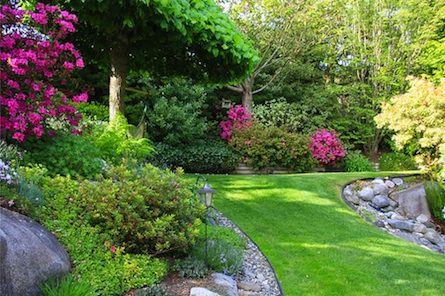 Pin By Deirdre Magee On Ideas For The Yard Beautiful Gardens Landscaping Shrubs Garden Design