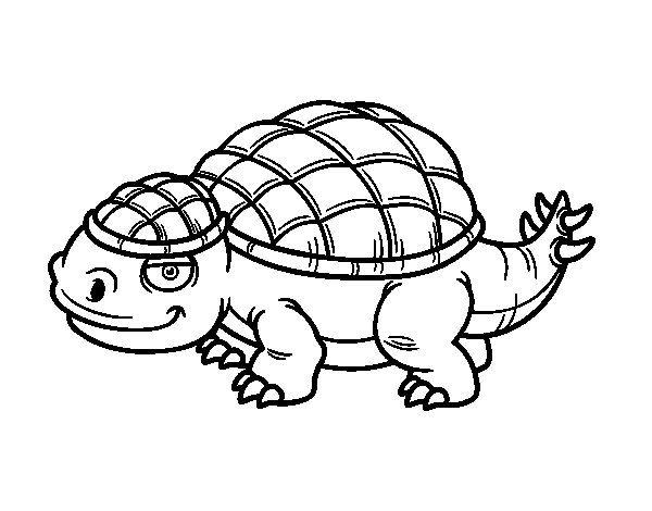 Dibujo de Anquilosaurio para Colorear | English for Joaquin | Pinterest