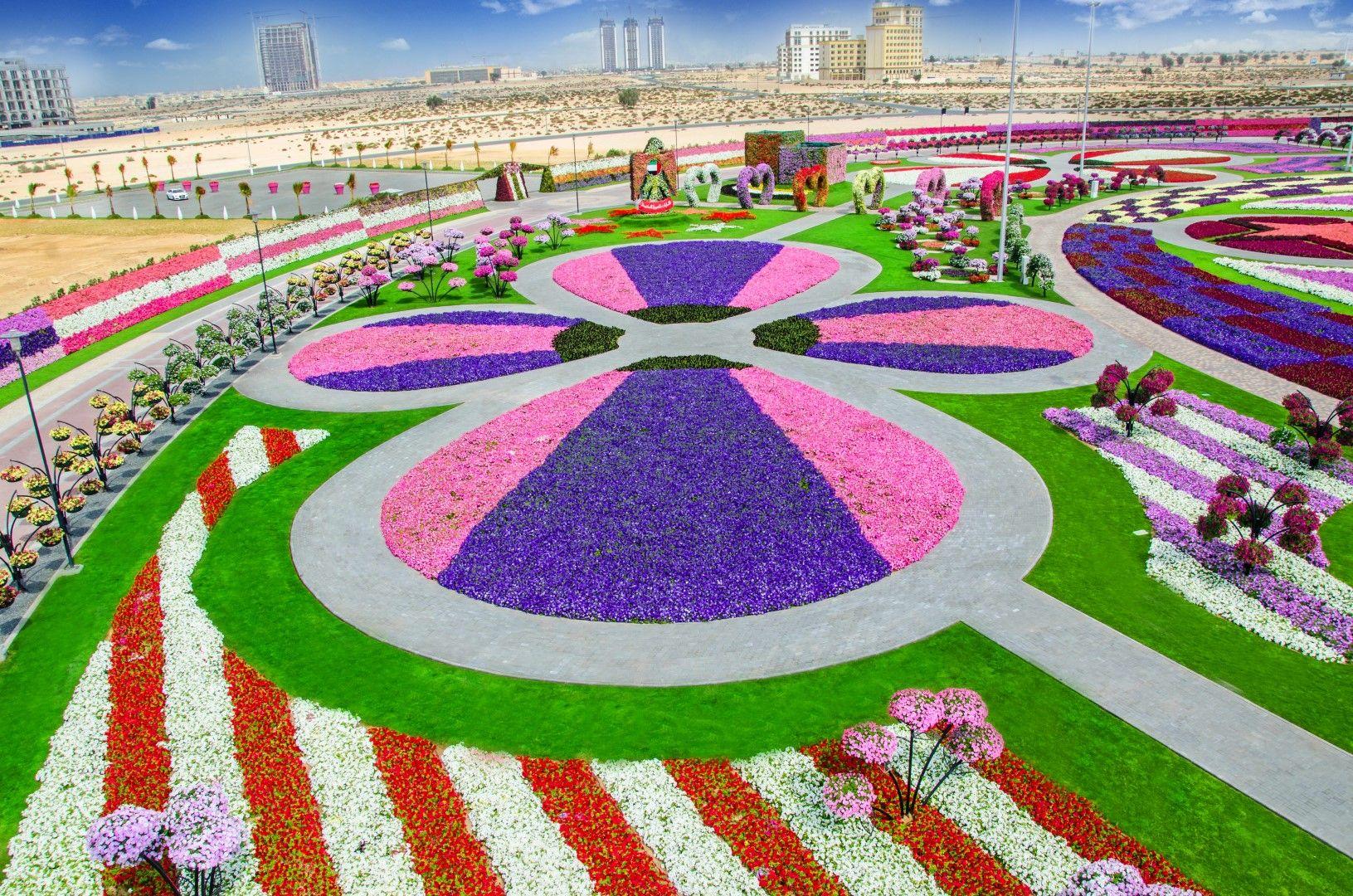 Dubai Miracle Garden Miracle garden, Most beautiful