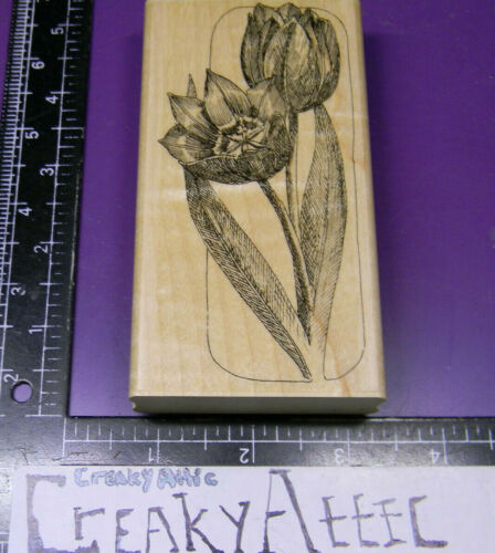 TULIPS ETCHING FLOWERS LONG RUBBER STAMP IMPRESSION OBSESSION 1098 CREAKYATTIC   eBay