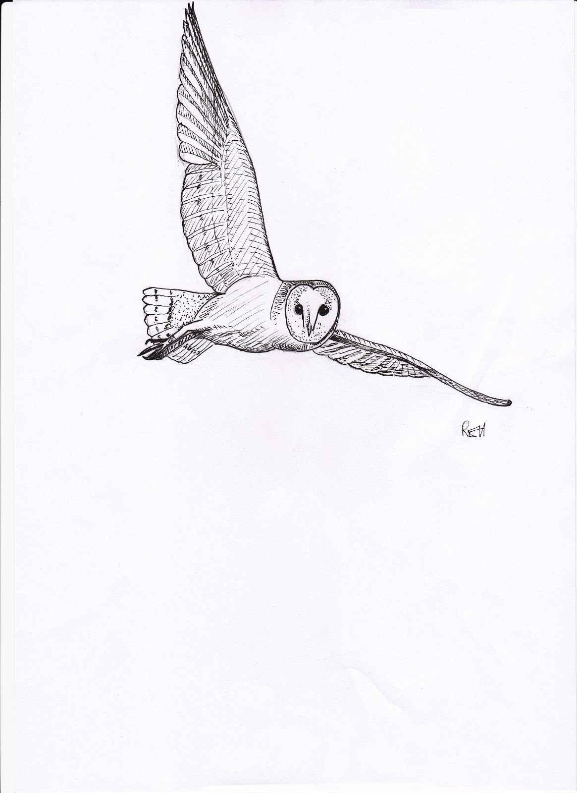 Pin By Clayton On Tattoos In 2020 With Images Owl Tattoo Design Barn Owl Tattoo