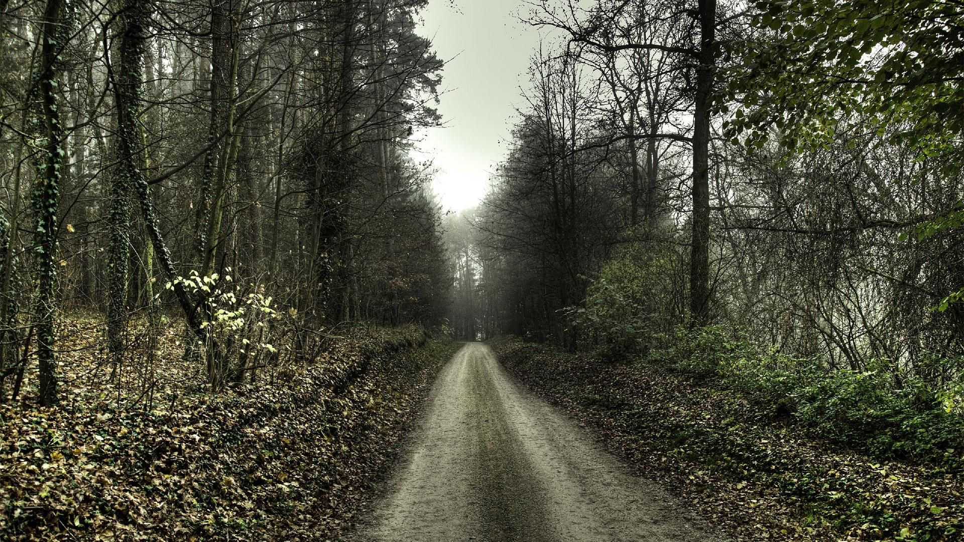 awesome back road wallpaper