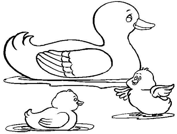 Coloriage canards coloriage enfants pinterest canards coloriage et coloriage enfant - Canard dessin facile ...