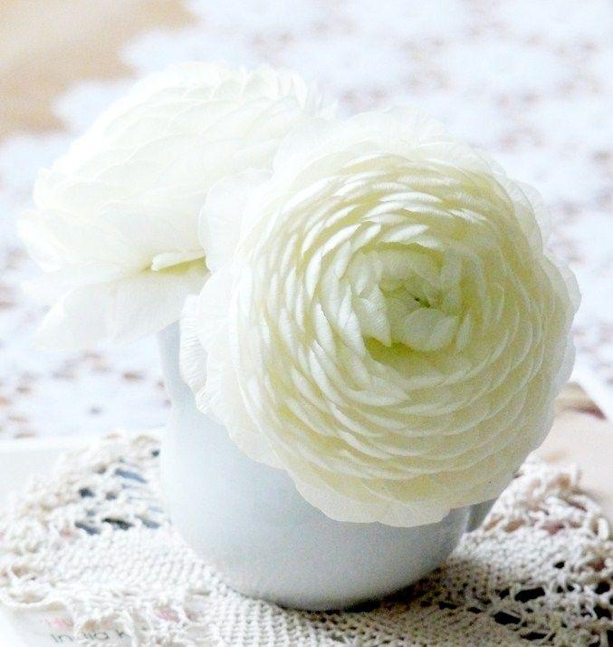 Jardin Masculin Ou Feminin: White Flower