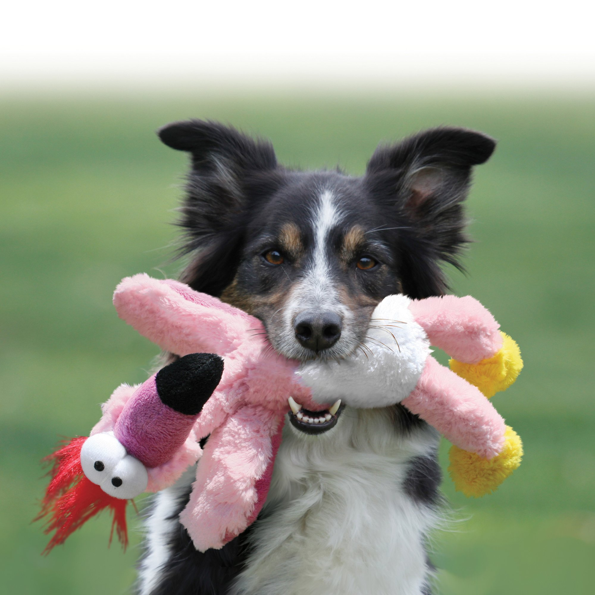 Kong Wild Knots Flamingo Dog Toy Small Pink Dog Toys Dogs