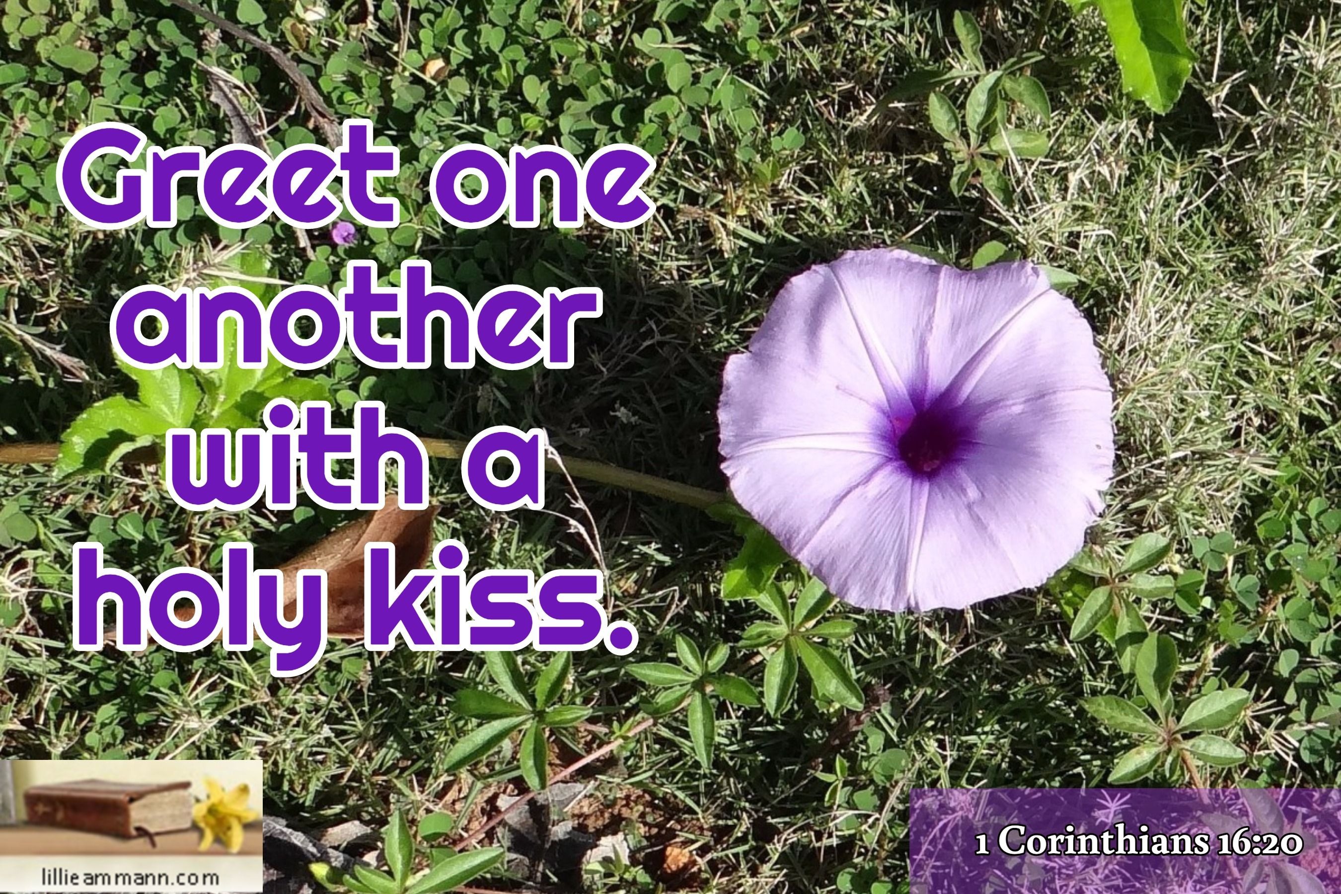 Greet One Another With A Holy Kiss 1 Corinthians 1620