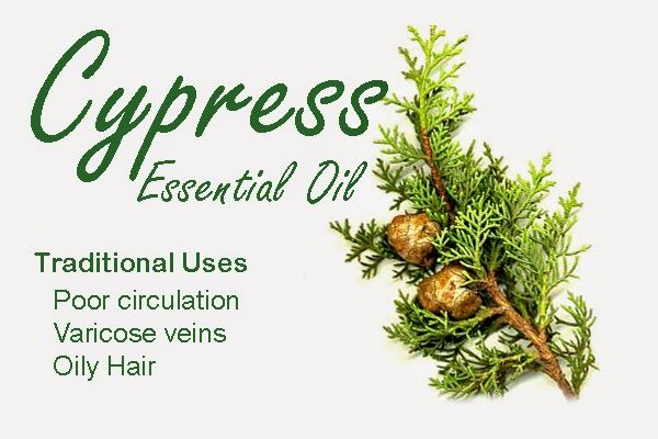 a natural perspective: Essential Oils and Blends for Broken Capillaries