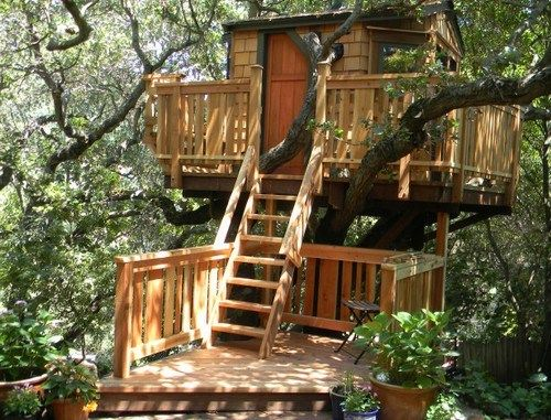 Top 10 Spectacular Tree Houses In The World Tree House Tree House Kids Cool Tree Houses