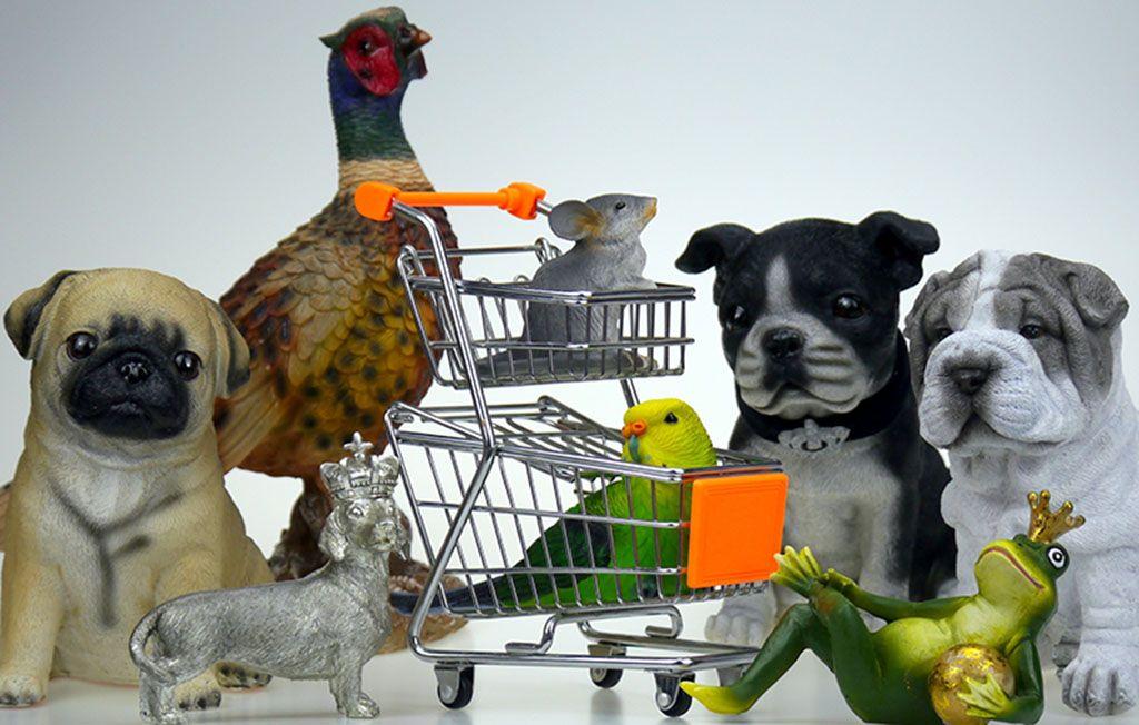 فروشگاه غذای حیوانات خانگی علاوه بر تامین غذا ، لوازم