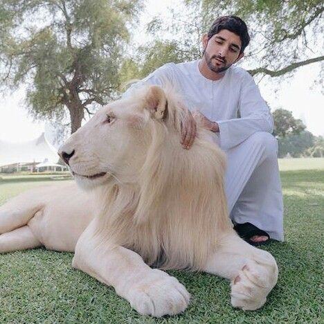 Sheikh Hamdan   Handsome prince, Prince crown, Royal prince