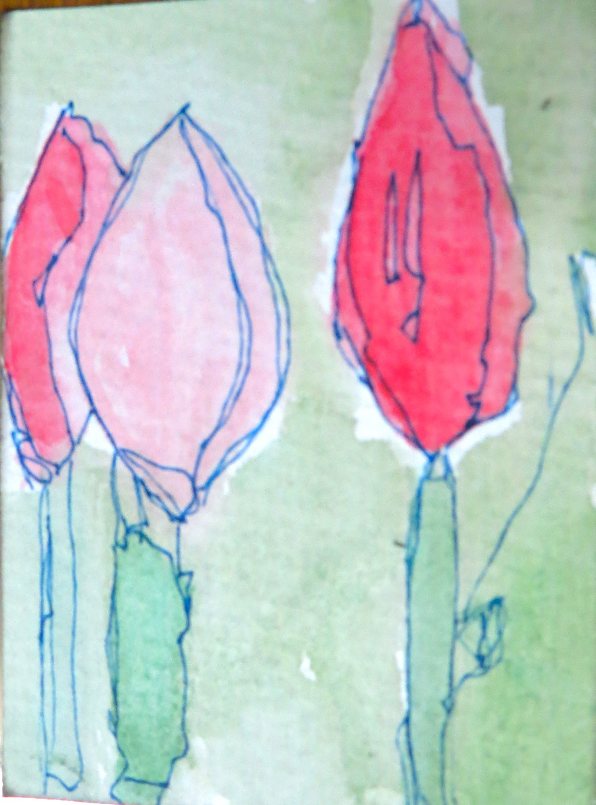 Watercolour and ink atcs by kat gottke th april pictures i