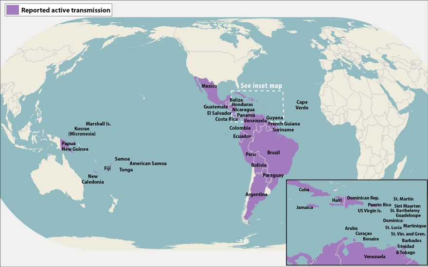 All countries and territiories pinterest zika virus and health world map showing countries and territories with reported active transmission of zika virus as of may 19 2016 countries are listed in the table below gumiabroncs Images