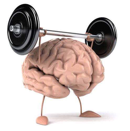 Brain Train – Academy Of Everything