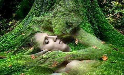 Umarmung von Mutter Natur