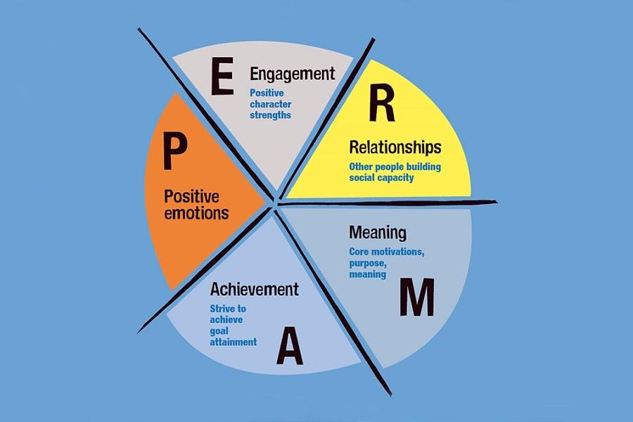 positive psychology - Google Search | Positive psychology ...