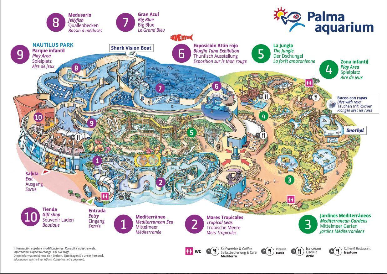 Plan De L Aquarium De Palma De Majorque