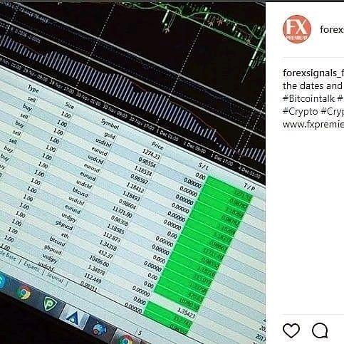 Daily forex signals forum