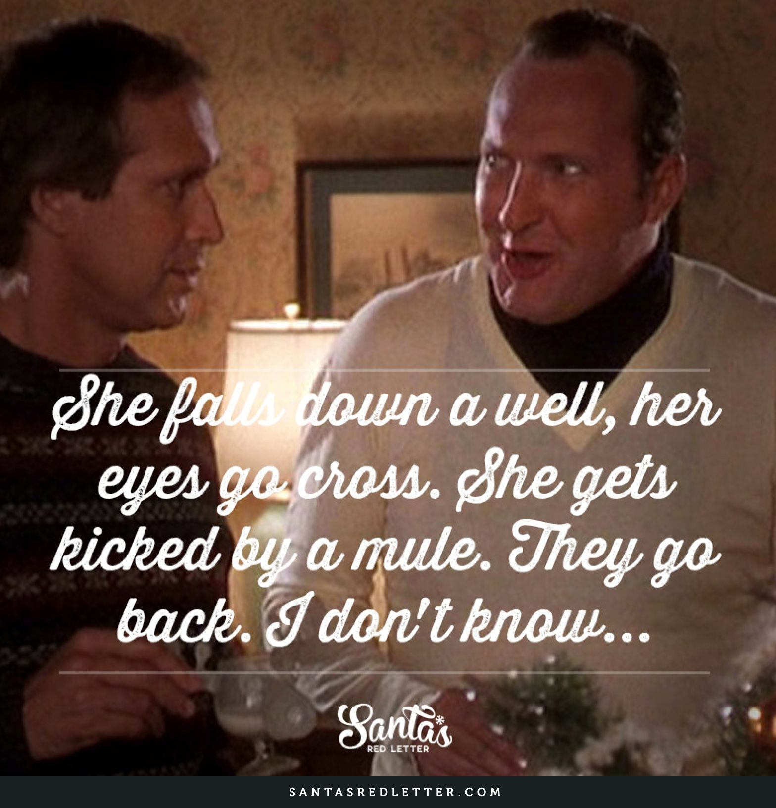 She Falls Down A Well Her Eyes Go Cross She Gets Kicked By A Mule They Go Back I Don T Christmas Vacation Quotes Christmas Vacation Movie Vacation Quotes
