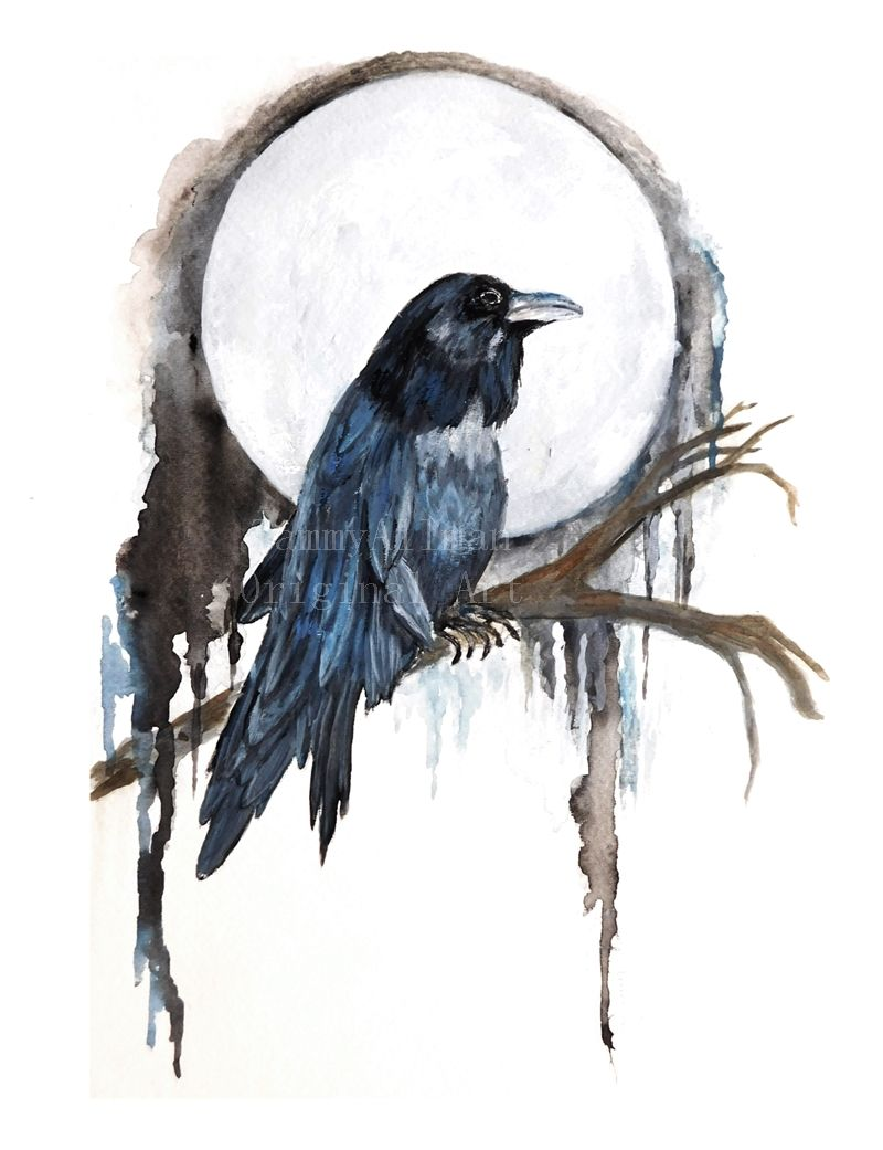 The Raven Has Been Symbolic In Different Cultures And Religions For
