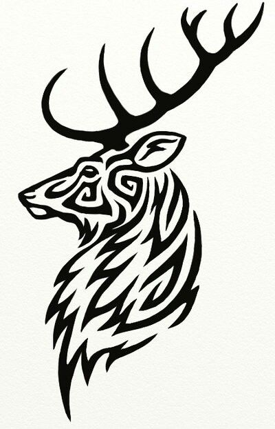 White Ink Deer Tattoo Designs Stag Tattoo Tribal Drawings