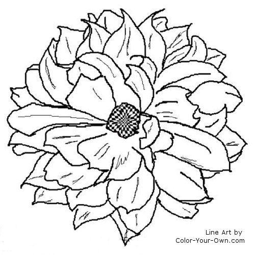 Dahlia Flower Line Art Flower Line Drawings Flower Coloring