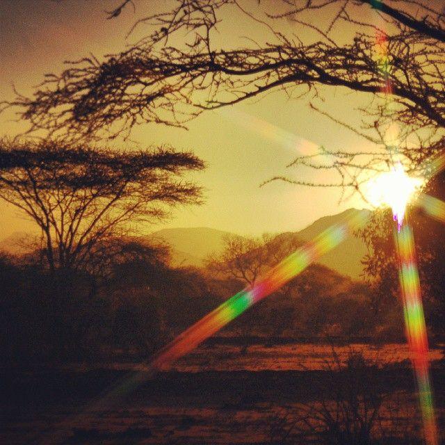 tsavo.Kenya