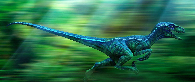 raptor blue jurassic world pinterest jurassic park jurassic