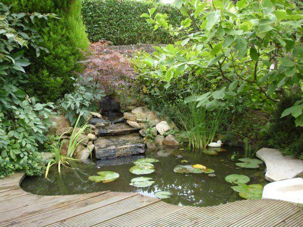 bassin-de-jardin-bois-hors-sol-poissons-plantes.jpg 600 × 449 pixels ...