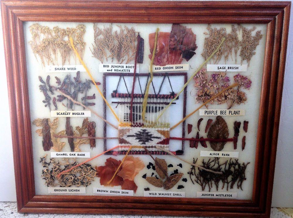 Vintage Navajo Rug Color Chart Native American Indian Plant Wool Art