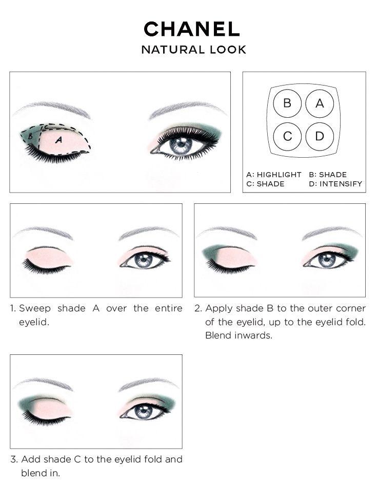 Eye Face Diagram Wiring Circuit