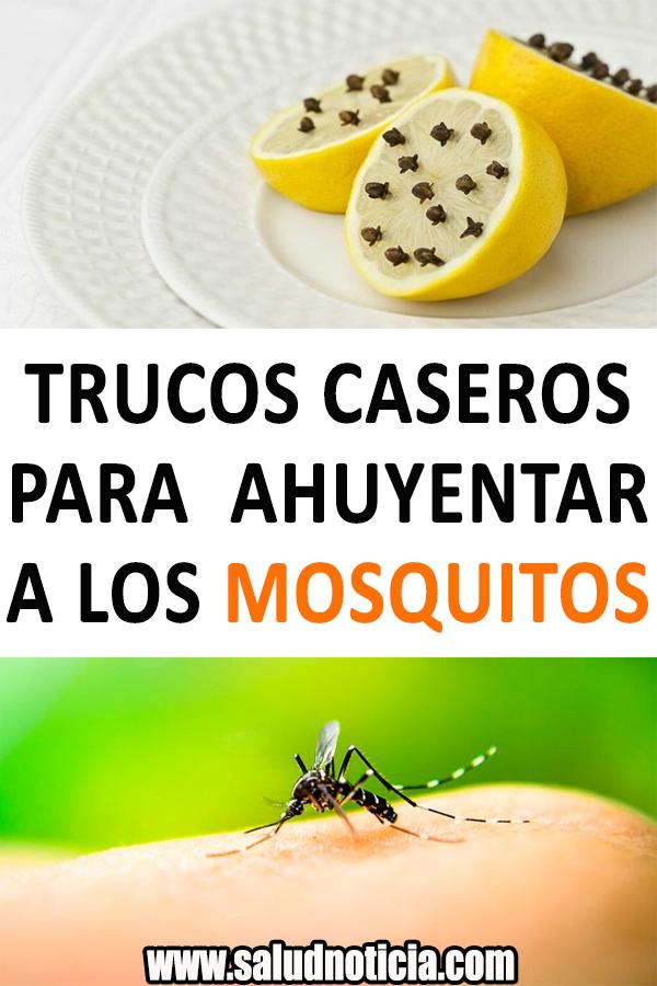 Trucos Caseros Para Ahuyentar A Los Mosquitos Trucos Caseros Tips Caseros Remedios Caseros Fruit Food Cantaloupe