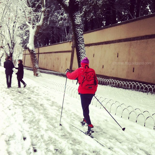 Snow in Rome ~ February 2012