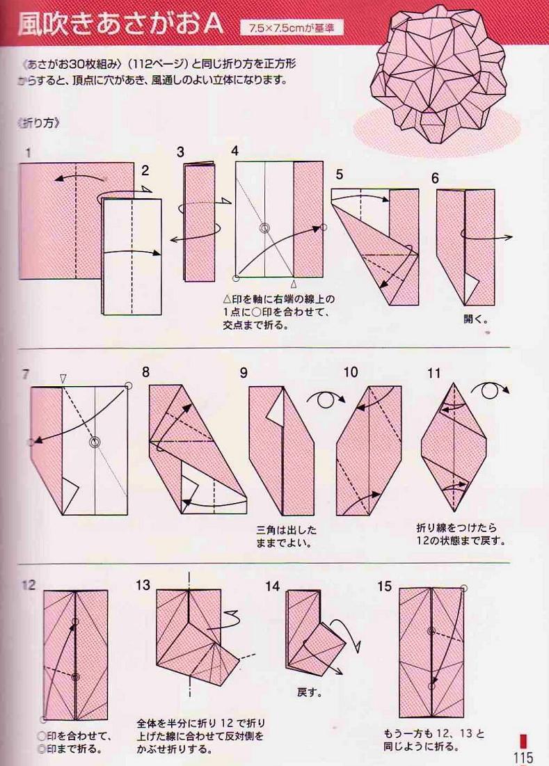 Diagram For Morning Glory Flower Asagao Kusudama By Tomoko Fuse More Diagrams Pin Isabel Takaes On Origami Pinterest Rh Co Uk
