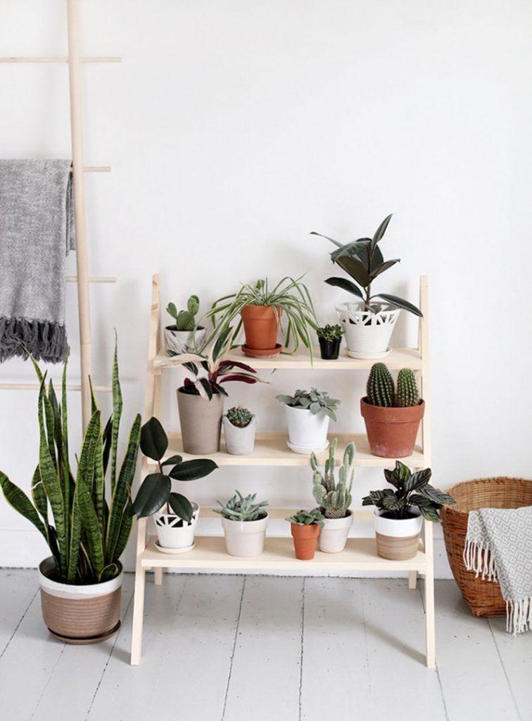 Plantes v g taux green nature v g taliser son int rieur avec style tendance d co 2018 conseils for Tendance deco interieur