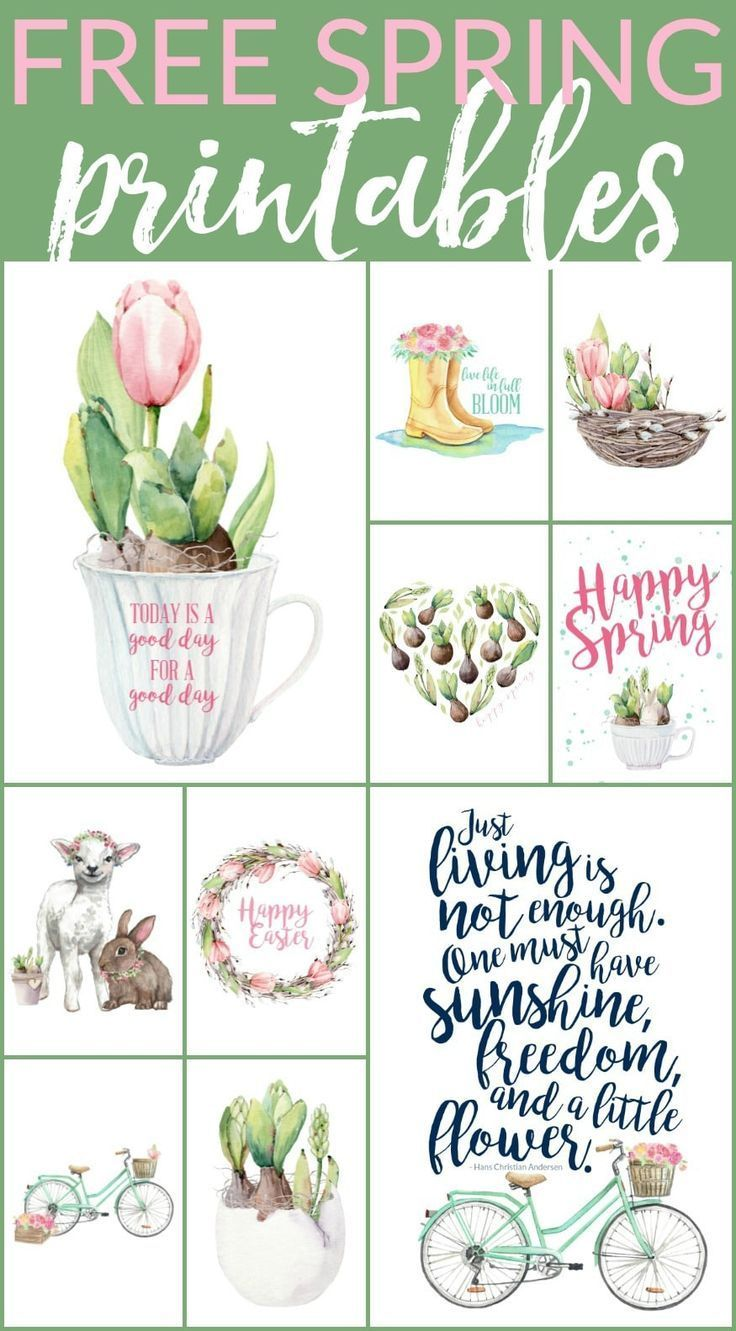 10 Floral Free Spring Printables (and more!)
