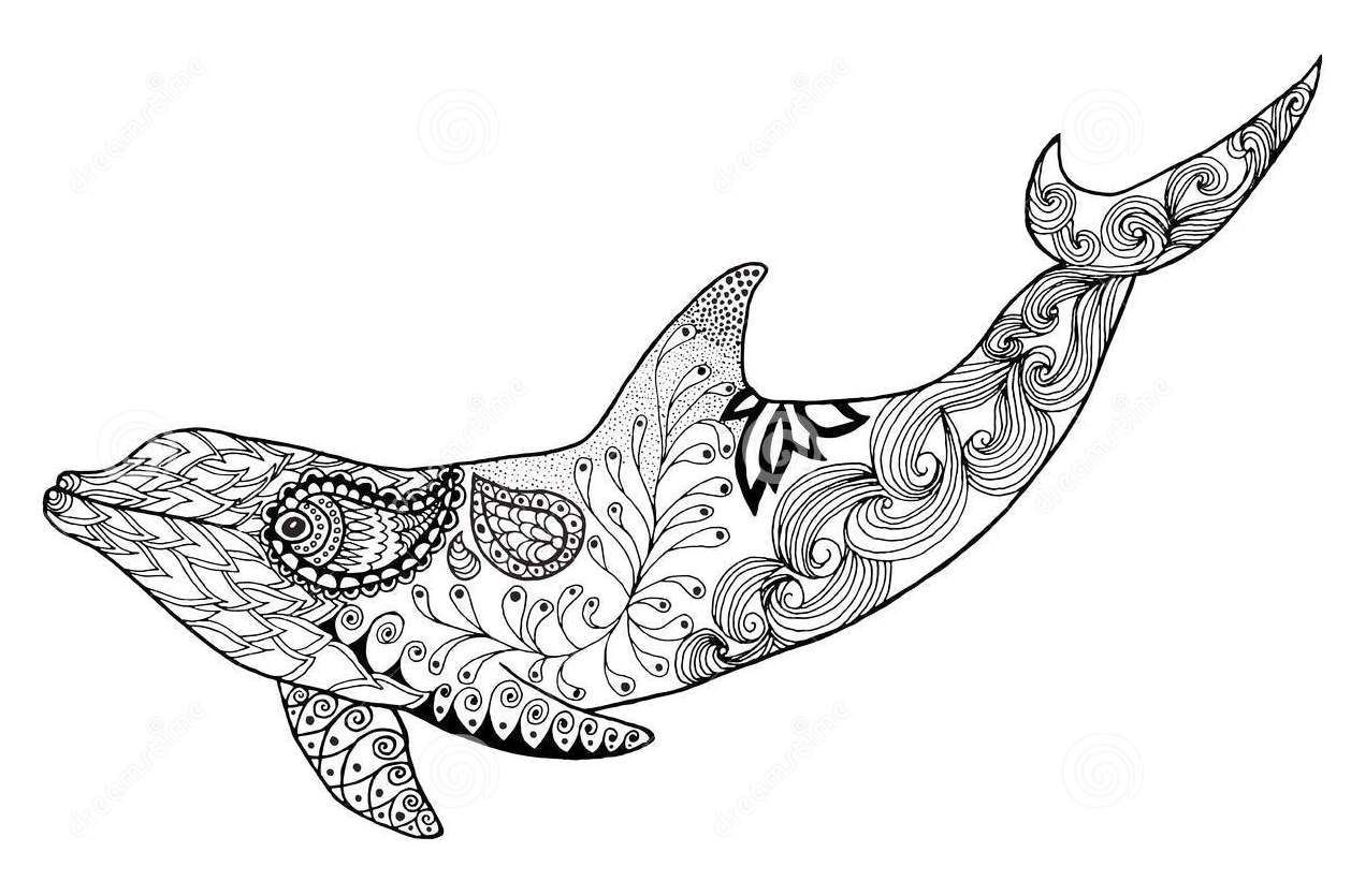 Zentangle Dolphin Colouring Vector