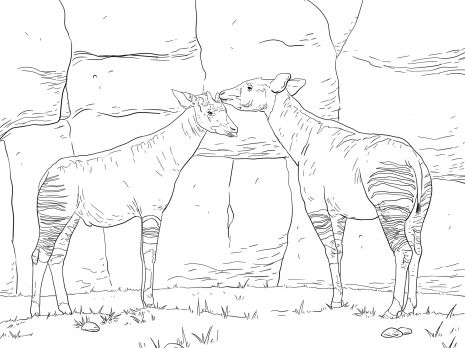 coloring pages of okapi Two Okapis coloring page VBS