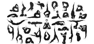 yoga - Google Search