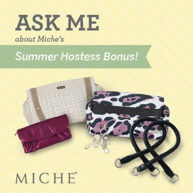 Book your party before the end of July to enjoy the summer specials and earn your Miche bag FREE