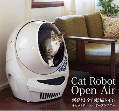 Cat Toilet の画像検索結果 猫トイレ