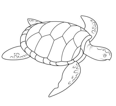 Sea turtle tattoo от Catherine Gardner | Раскраски с ...