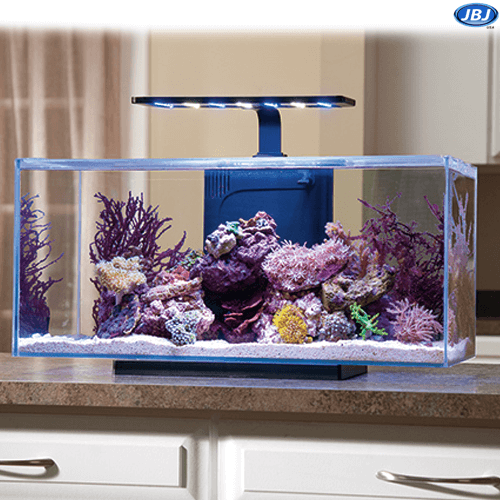 Jbj Rimless Desktop 10 Gallon Flat Panel Aquarium W Lyra Led Light On Sale 219 97 Marine Fish Tanks Saltwater Tank Fish Tank