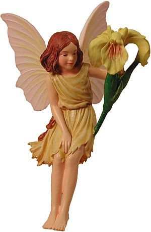The Iris Flower Fairy