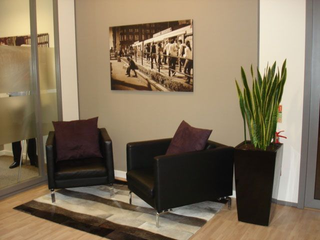 Professional Office Decorating Ideas Plant Business Office