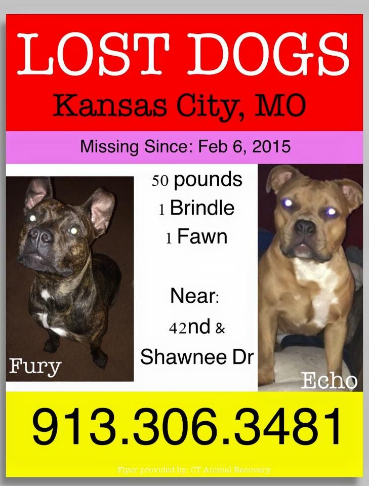 Missing In Kansas City Mo They Went Missing From 42nd Shawnee