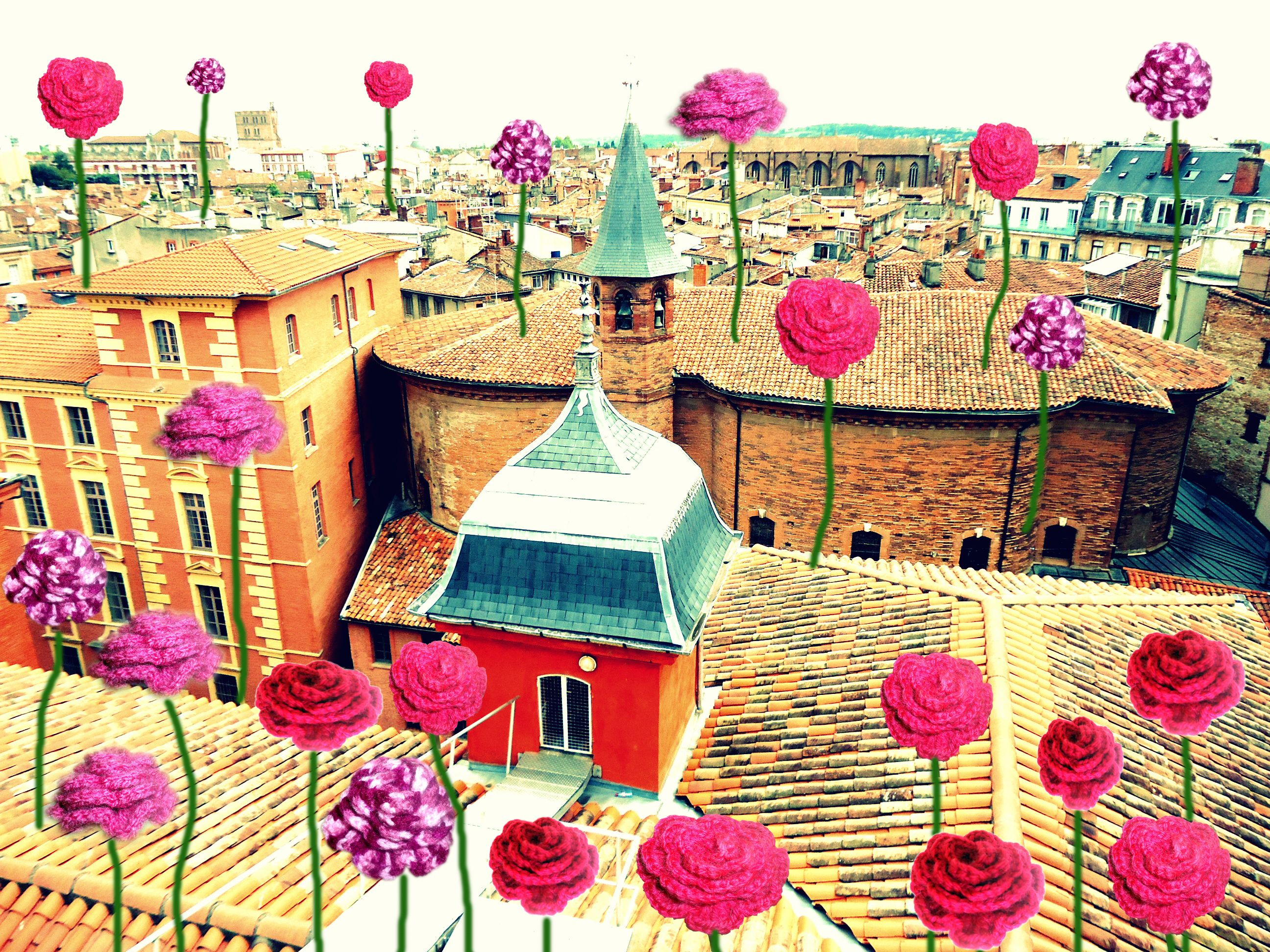 Toulouse ma ville rose