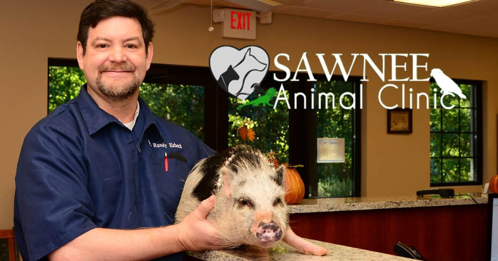 Sawnee Animal Clinic Would Love To Have Your Pet Join Our Family