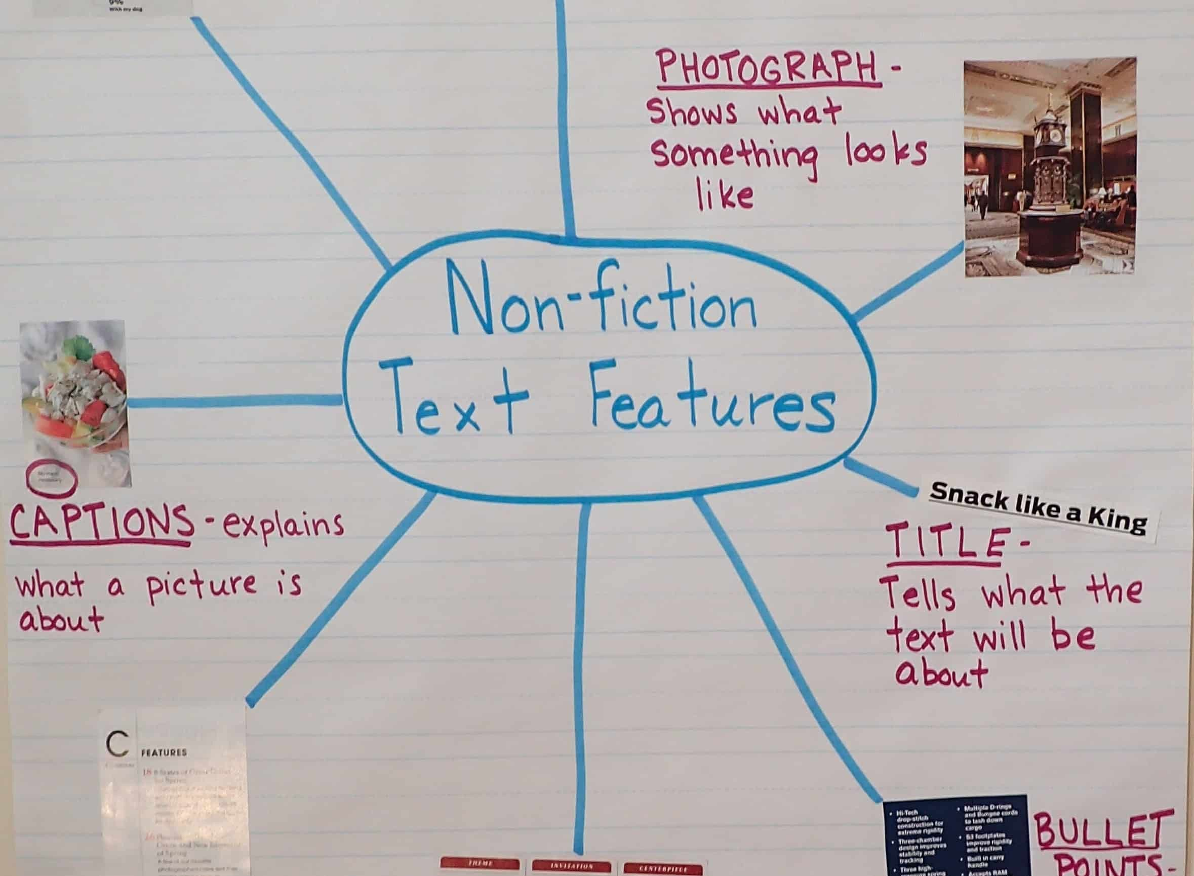 Text Features Worksheet 2nd Grade Text Features Text Features Worksheet Nonfiction Text Features Lesson