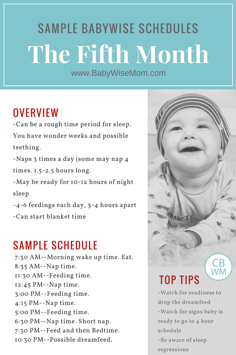 Babywise Sample Schedules The Fifth Month  Baby Schedule Babies