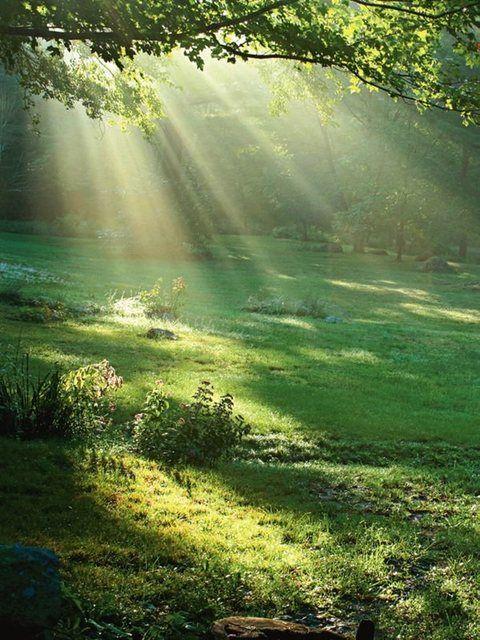 Artland Glasbild »Trevor Slauenwhite: Lichtkegel«   OTTO